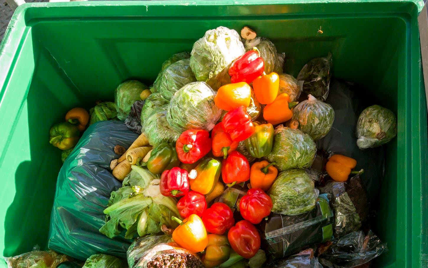 solution gaspillage alimentaire